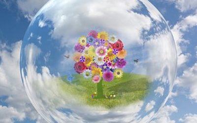 L'association Terre Agir pour la Planète